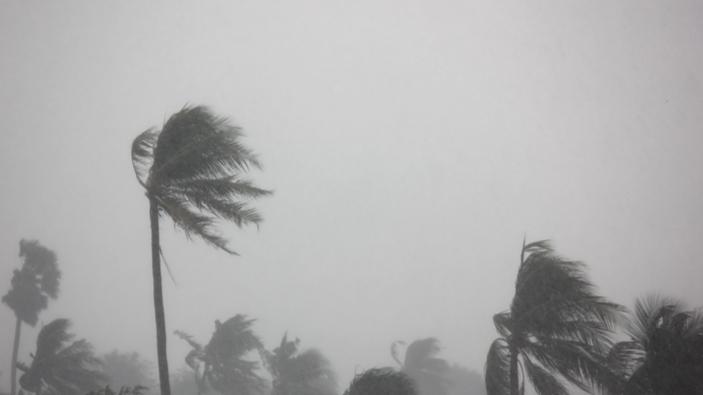 """Weltweiter Aufruf zur Hilfe für die von Hurrikan """"Dorian"""" zerstörten Bahamas"""