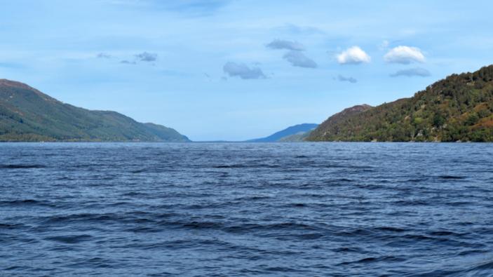 Das Ungeheuer von Loch Ness könnte ein Riesenaal sein