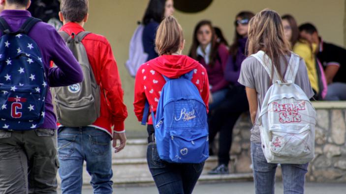 Rapporto Ocse PISA, un quindicenne su 20 non distingue tra fatti e opinioni