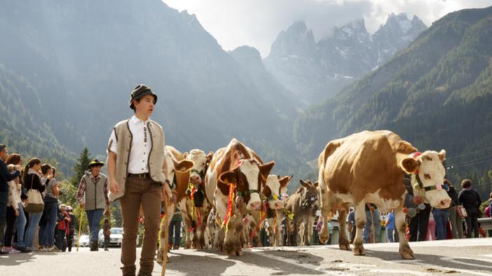 La transumanza dei pastori italiani è patrimonio culturale dell'Unesco