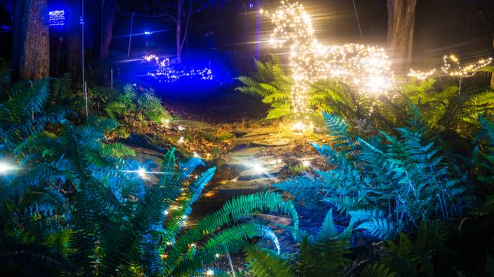 Las luces de Navidad en las ciudades, una tradición actualmente controvertida