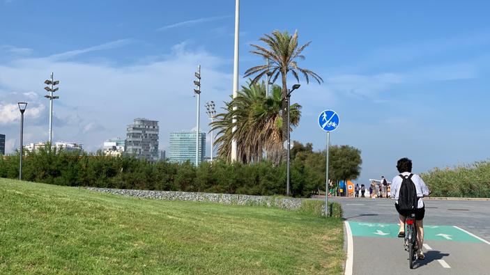 Madrid y Barcelona plantan cara a la contaminación