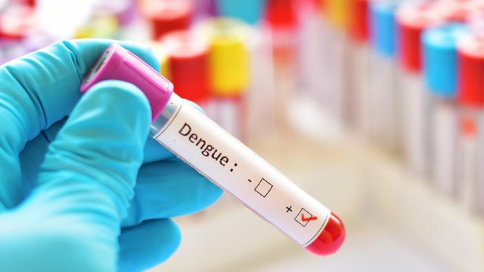 Los números de la epidemia de dengue en Paraguay