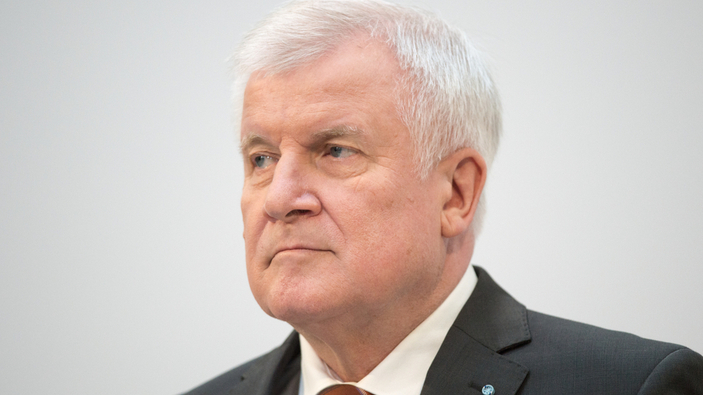 Bundesverfassungsgericht gibt der AfD im Streit mit Horst Seehofer recht