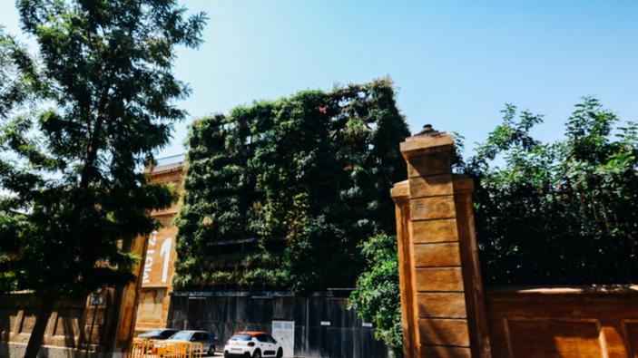 Adiós al jardín vertical de la Tabacalera