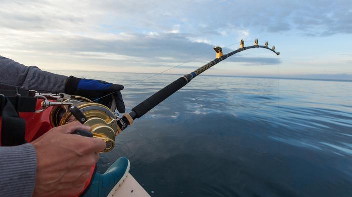 L'Europa valuta l'impatto della pesca ricreativa sull'ambiente