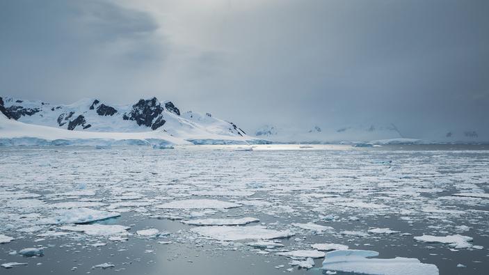 L'Antartide, la strana realtà dell'unico continente senza Covid