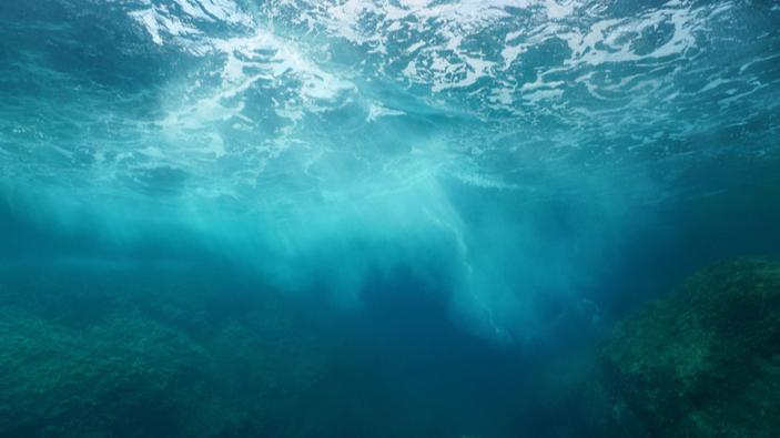 L'homme qui aimait la mer