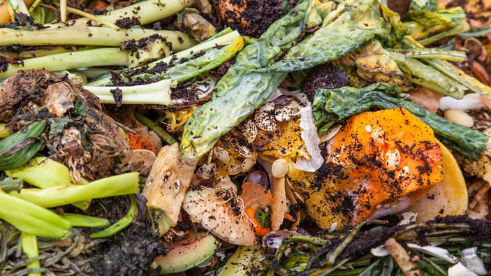 900 millones de toneladas de comida se tiran cada año