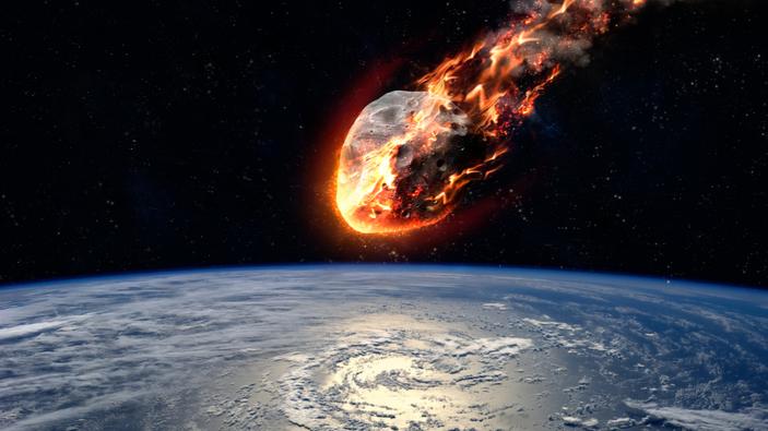Il meteorite, che uccise i dinosauri, è anche responsabile della creazione delle foreste pluviali tropicali