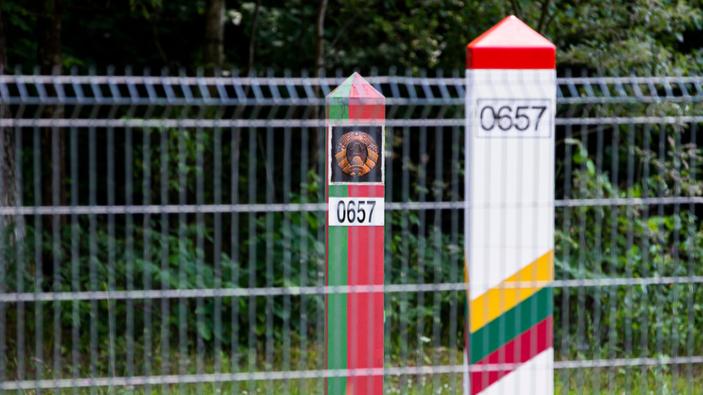L'Europa sosterrà la Lituania durante la crisi migratoria alla frontiera con la Bielorussia
