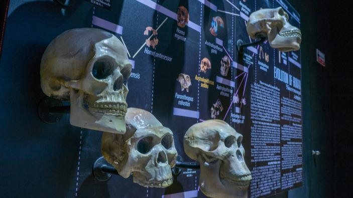 Une étude établit un lien entre le climat et la corpulence des humains
