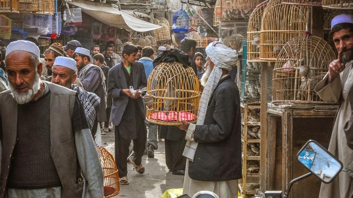 ¿Sabrán los talibanes resucitar la economía afgana?