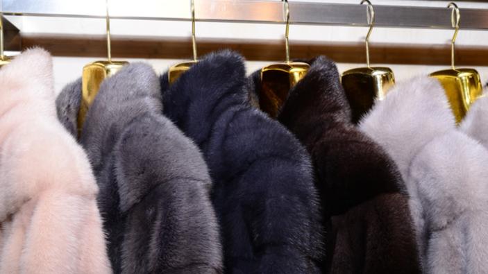 La marque Saint Laurent renonce à utiliser de la fourrure animale