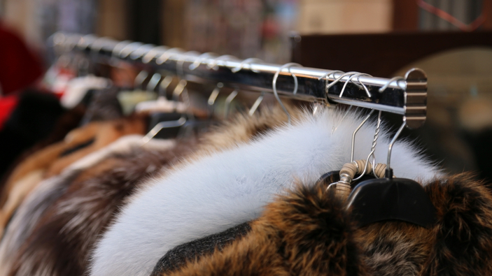 La mode renonce à la fourrure animale